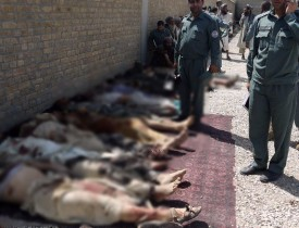 30 Taliban insurgents killed as suicide vests explodes in Farah gathering