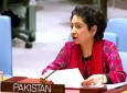 US and Pakistan in heated exchange over Afghanistan in UNSC debate